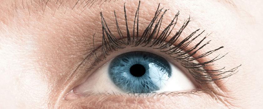 Blaue Augen – Eine Laune der Natur?