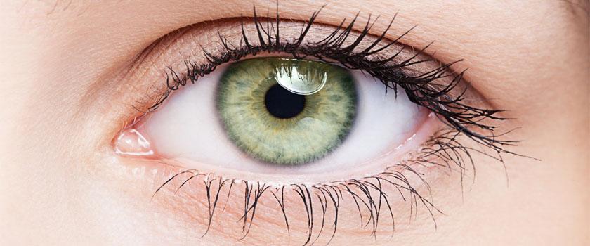 Verwendung von Farb- und Effektlinsen – Experteninterview mit Dr. med. Robert Wagner zum Thema Farb- und Effektlinsen