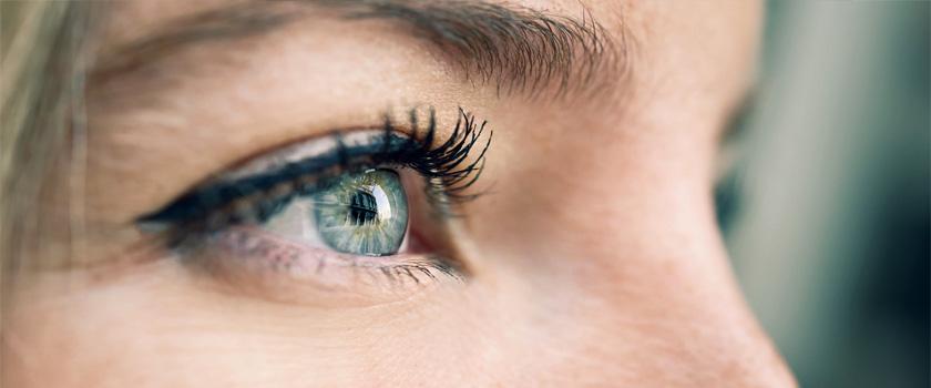 Sieben kuriose Fakten über die Augen