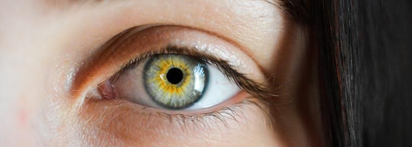 Die Aufgabe der Iris im Auge